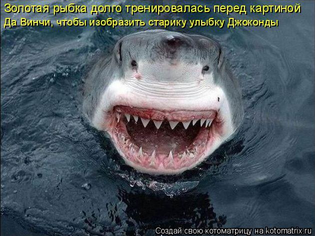 Котоматрица: Золотая рыбка долго тренировалась перед картиной  Да Винчи, чтобы изобразить старику улыбку Джоконды