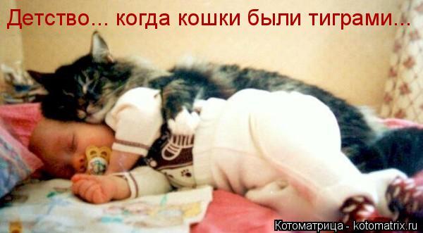 Котоматрица: Детство... когда кошки были тиграми...