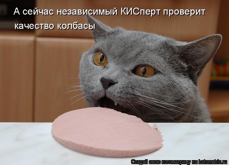 Котоматрица: А сейчас независимый КИСперт проверит качество колбасы