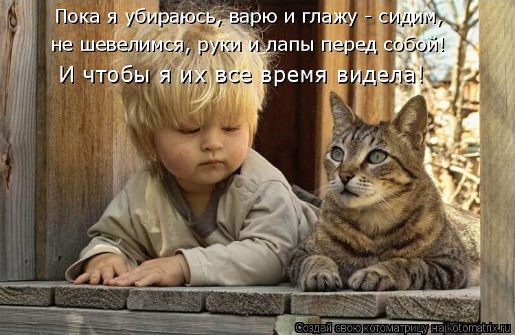Котоматрица: Пока я убираюсь, варю и глажу - сидим, не шевелимся, руки и лапы перед собой!  И чтобы я их все время видела!