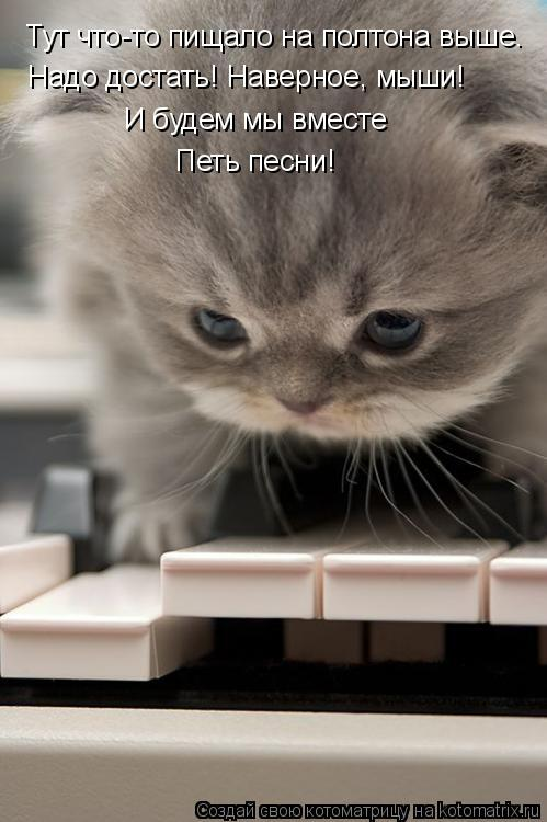 Котоматрица: Тут что-то пищало на полтона выше. Надо достать! Наверное, мыши! И будем мы вместе Петь песни!