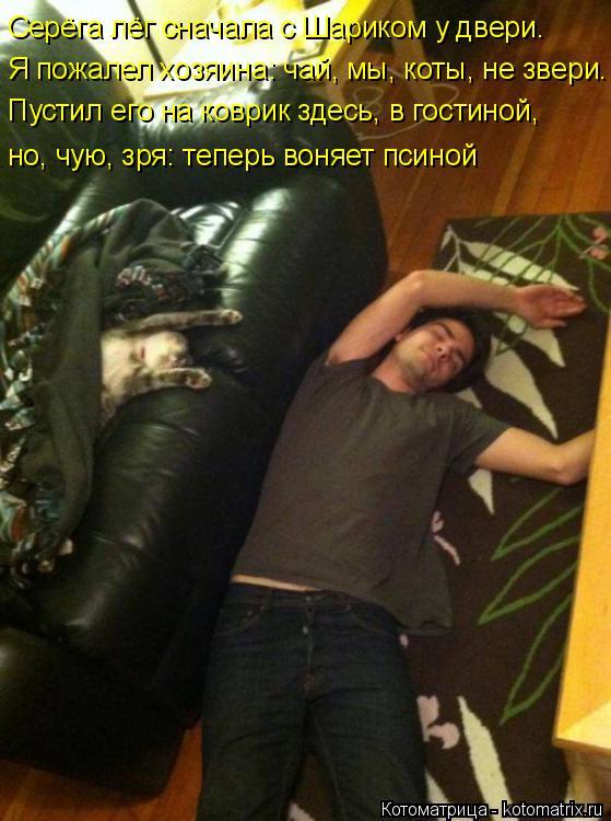 Котоматрица: Серёга лёг сначала с Шариком у двери.  Я пожалел хозяина: чай, мы, коты, не звери. Пустил его на коврик здесь, в гостиной, но, чую, зря: теперь во