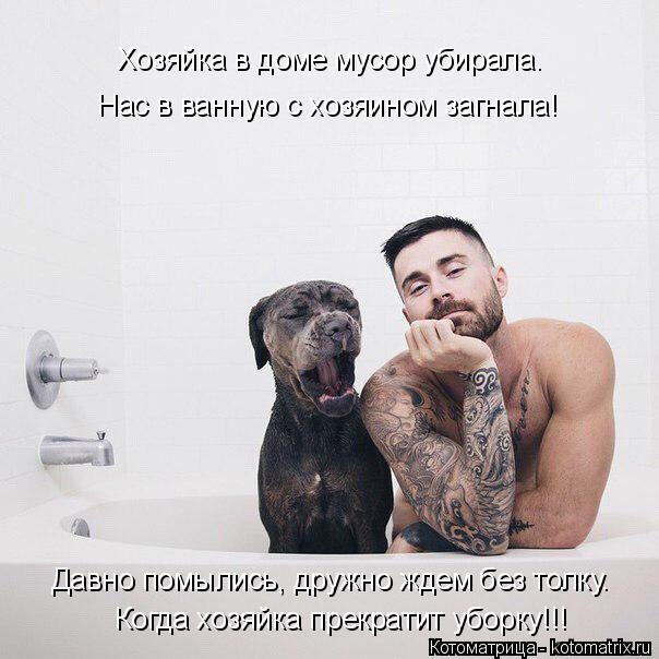 Котоматрица: Хозяйка в доме мусор убирала. Нас в ванную с хозяином загнала! Когда хозяйка прекратит уборку!!! Давно помылись, дружно ждем без толку.