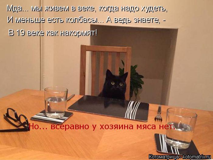 Котоматрица: Мда... мы живем в веке, когда надо худеть,  И меньше есть колбасы... А ведь знаете, - В 19 веке как накормят! Но... всеравно у хозяина мяса нет.