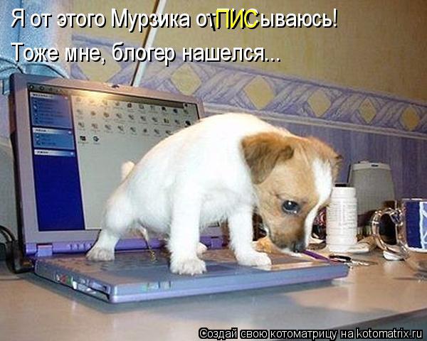 Котоматрица: Я от этого Мурзика отПИСываюсь! \ ПИС Тоже мне, блогер нашелся...