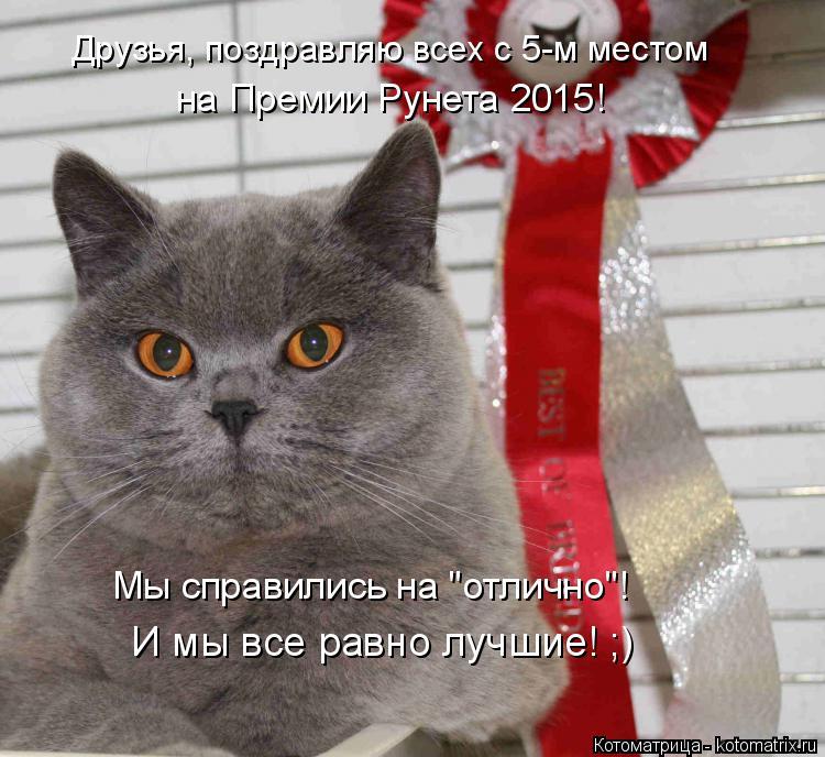 """Котоматрица: Друзья, поздравляю всех с 5-м местом  на Премии Рунета 2015! Мы справились на """"отлично""""! И мы все равно лучшие! ;)"""