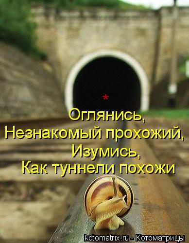 Котоматрица: Оглянись, Незнакомый прохожий, Изумись, Как туннели похожи *