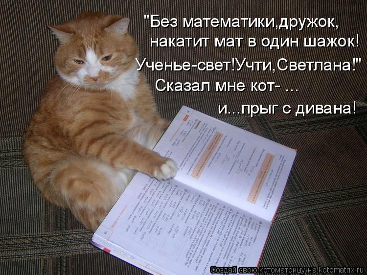 """Котоматрица: накатит мат в один шажок! """"Без математики,дружок, Ученье-свет!Учти,Светлана!"""" Сказал мне кот- ... и...прыг с дивана!"""