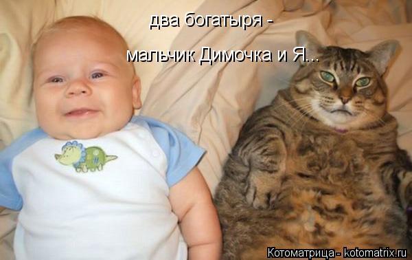 Котоматрица: два богатыря - мальчик Димочка и Я...