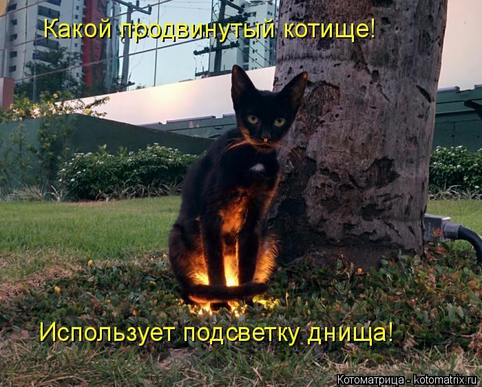 Котоматрица: Какой продвинутый котище! Использует подсветку днища!