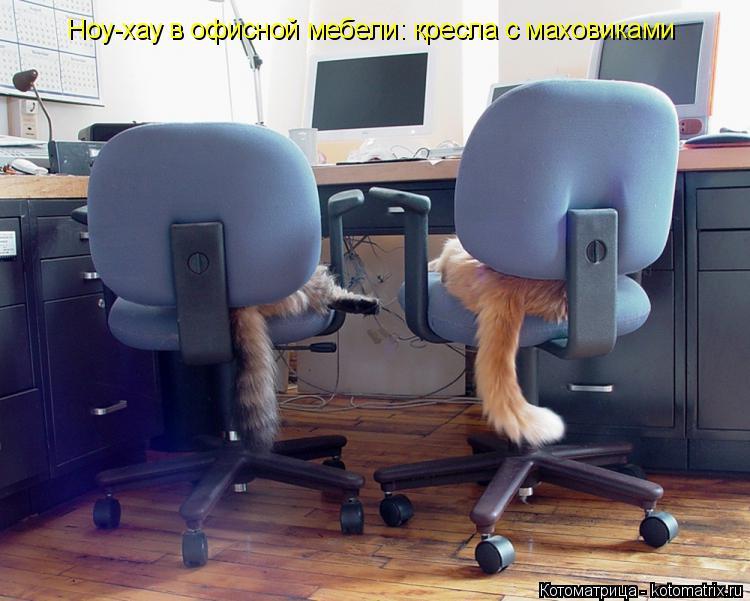 Котоматрица: Ноу-хау в офисной мебели: кресла с маховиками