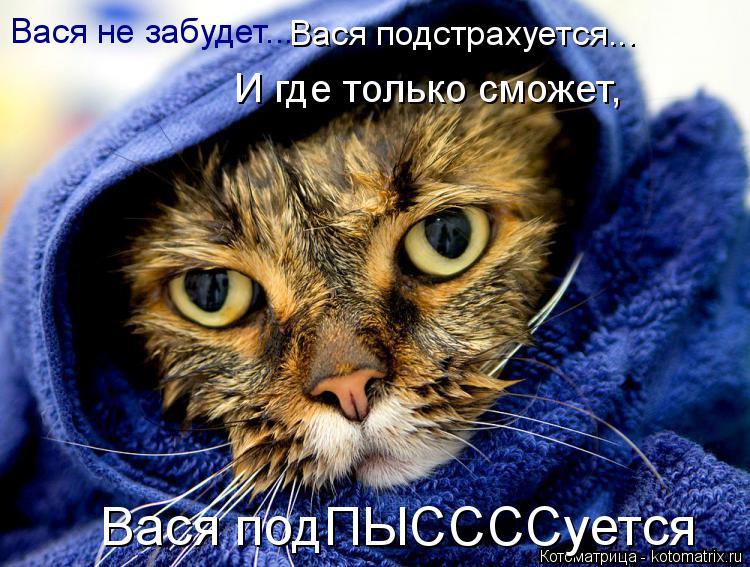 Котоматрица: Вася не забудет...  Вася подстрахуется...  И где только сможет,  Вася подПЫССССуется