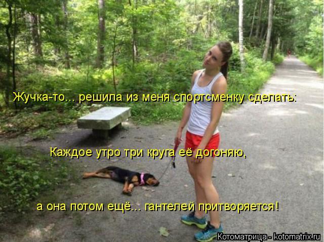 Котоматрица: Жучка-то... решила из меня спортсменку сделать: Каждое утро три круга её догоняю, а она потом ещё... гантелей притворяется!