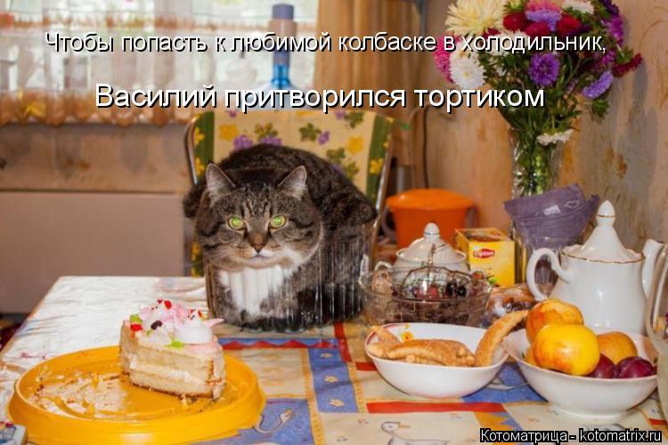 Котоматрица: Чтобы попасть к любимой колбаске в холодильник, Василий притворился тортиком