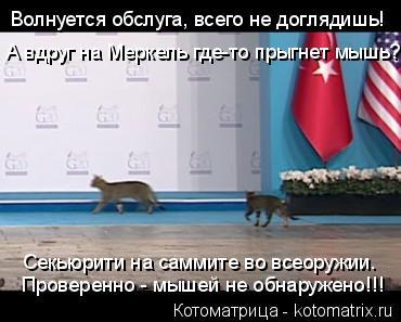 Котоматрица: Проверенно - мышей не обнаружено!!! Секьюрити на саммите во всеоружии. Волнуется обслуга, всего не доглядишь! А вдруг на Меркель где-то прыгн