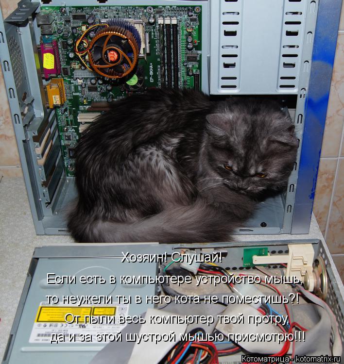 Котоматрица: Хозяин! Слушай! Если есть в компьютере устройство мышь, то неужели ты в него кота не поместишь?! От пыли весь компьютер твой протру, да и за эт