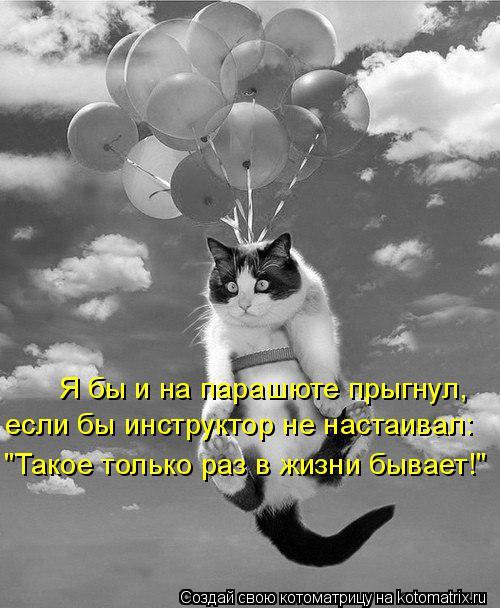 """Котоматрица: Я бы и на парашюте прыгнул, если бы инструктор не настаивал: """"Такое только раз в жизни бывает!"""""""