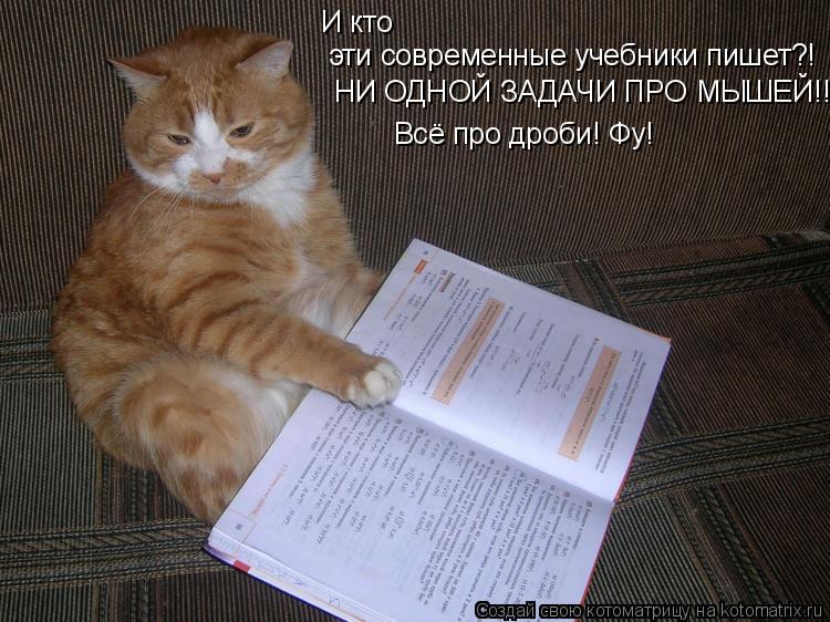 Котоматрица: И кто эти современные учебники пишет?! НИ ОДНОЙ ЗАДАЧИ ПРО МЫШЕЙ!!! Всё про дроби! Фу!
