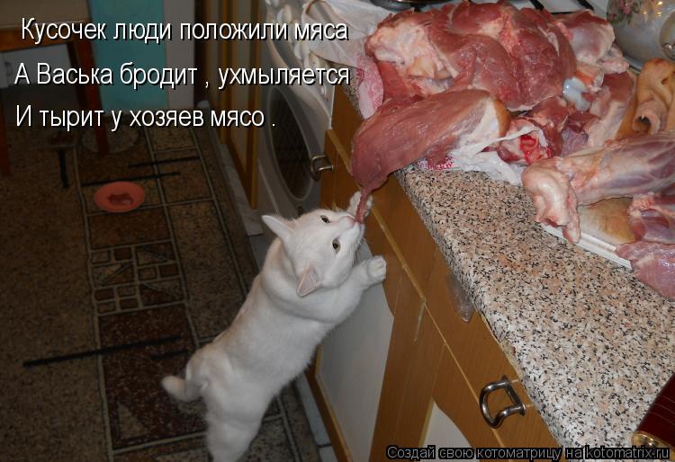Котоматрица: Кусочек люди положили мяса А Васька бродит , ухмыляется  И тырит у хозяев мясо .