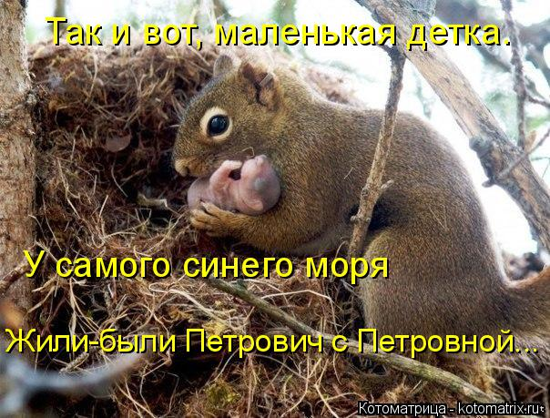 Котоматрица: Так и вот, маленькая детка. У самого синего моря Жили-были Петрович с Петровной...