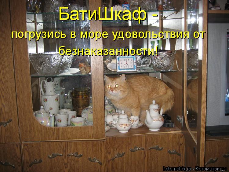 Котоматрица: БатиШкаф - погрузись в море удовольствия от безнаказанности!