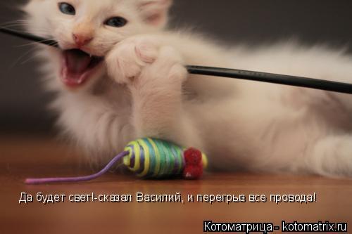 Котоматрица: Да будет свет!-сказал Василий, и перегрыз все провода!