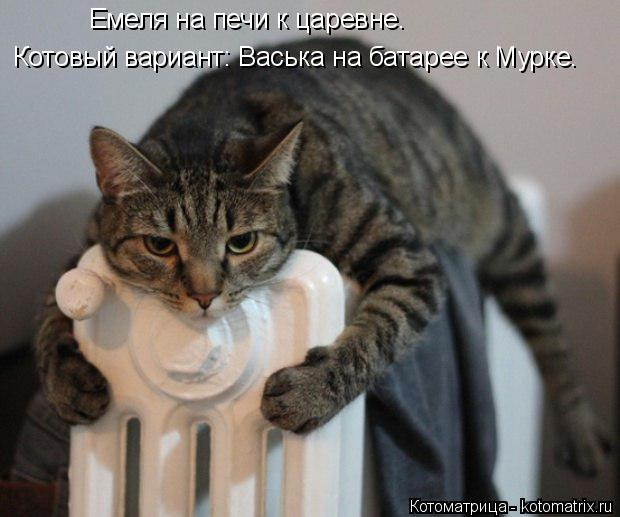 Котоматрица: Емеля на печи к царевне. Котовый вариант: Васька на батарее к Мурке.