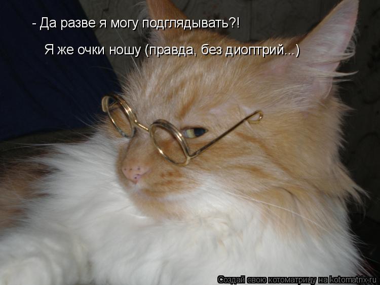 Котоматрица: - Да разве я могу подглядывать?! Я же очки ношу (правда, без диоптрий...)