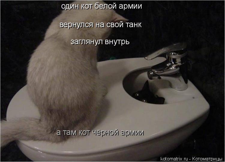 Котоматрица: один кот белой армии вернулся на свой танк заглянул внутрь а там кот чёрной армии