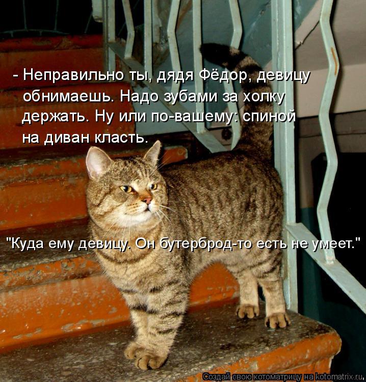 """Котоматрица: - Неправильно ты, дядя Фёдор, девицу обнимаешь. Надо зубами за холку  держать. Ну или по-вашему: спиной на диван класть. """"Куда ему девицу. Он бу"""