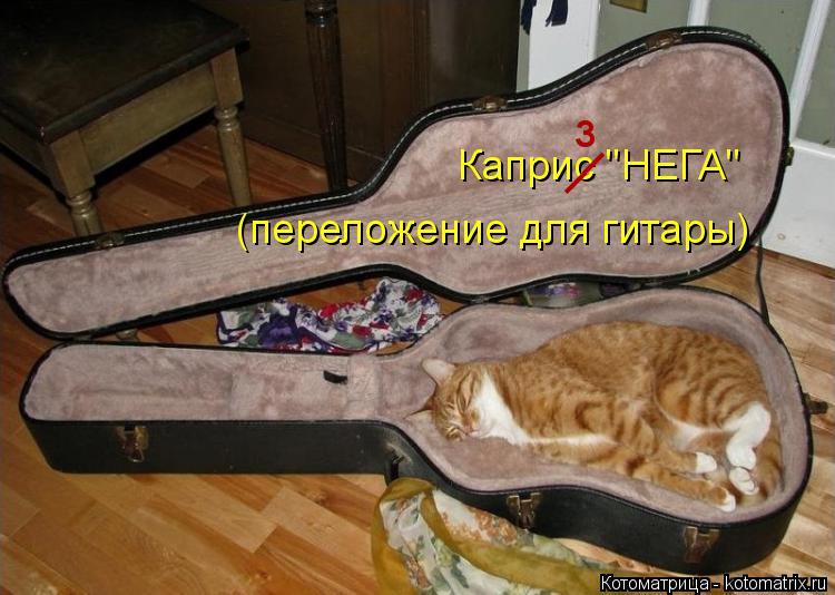 """Котоматрица: (переложение для гитары) Каприс """"НЕГА"""" __ з"""