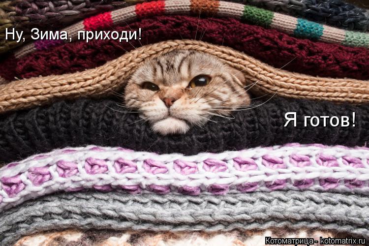 Котоматрица: Ну, Зима, приходи!  Я готов!