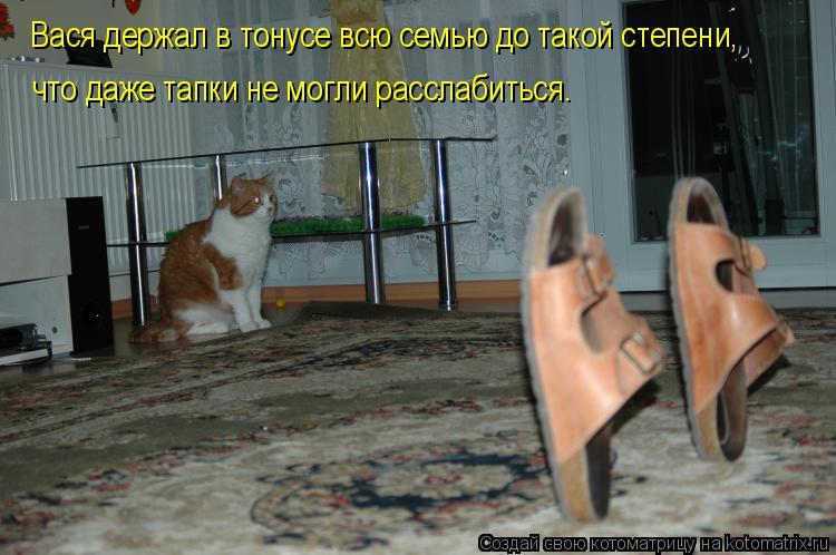 Котоматрица: Вася держал в тонусе всю семью до такой степени, что даже тапки не могли расслабиться.