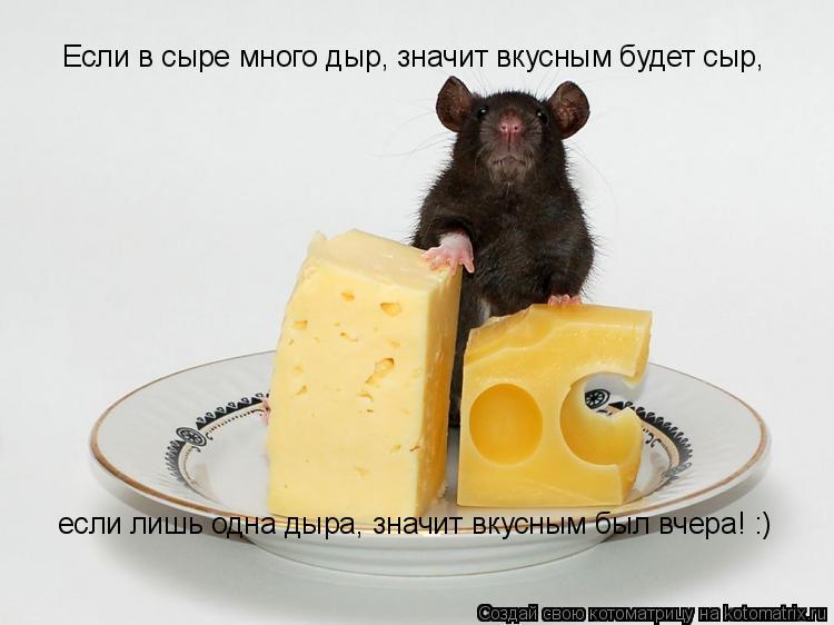 Котоматрица: Если в сыре много дыр, значит вкусным будет сыр если лишь одна дыра, значит вкусным был вчера! :) Если в сыре много дыр, значит вкусным будет с