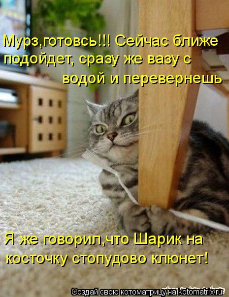 http://kotomatrix.ru/images/lolz/2015/11/21/U.jpg
