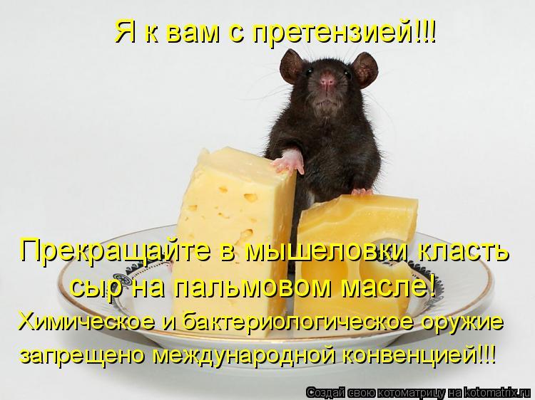 Котоматрица: Я к вам с претензией!!! Прекращайте в мышеловки класть  сыр на пальмовом масле! Химическое и бактериологическое оружие запрещено международ
