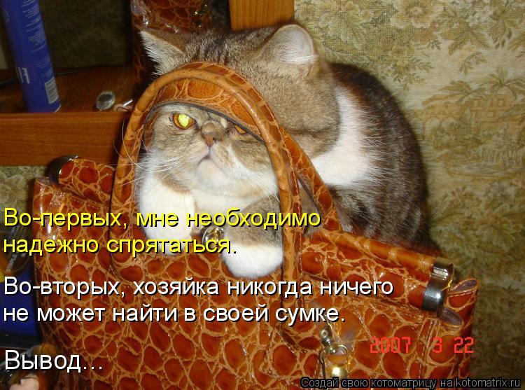Котоматрица: Во-первых, мне необходимо надежно спрятаться. Во-вторых, хозяйка никогда ничего  не может найти в своей сумке. Вывод...