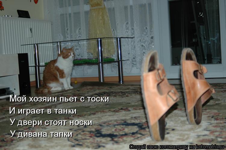 Котоматрица: Мой хозяин пьет с тоски  И играет в танки У двери стоят носки У дивана тапки