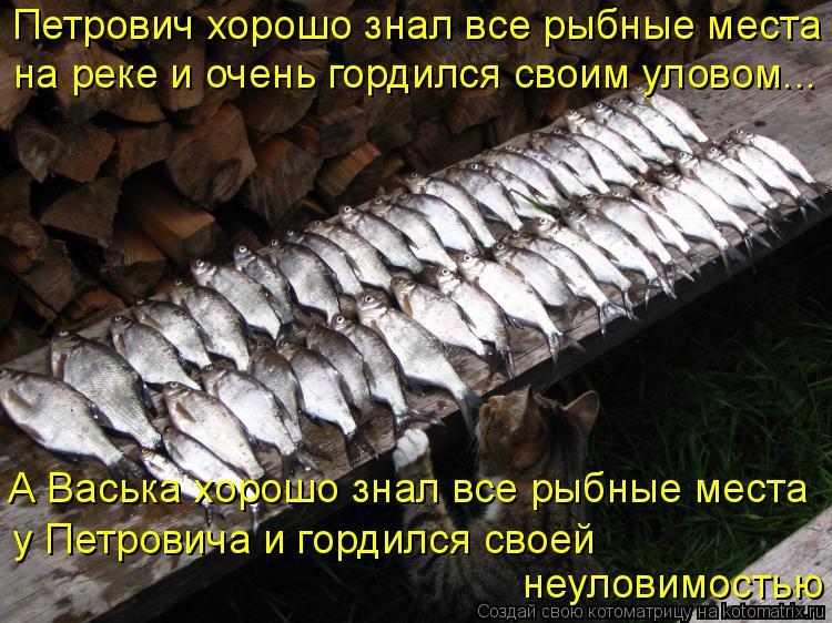 Котоматрица: Петрович хорошо знал все рыбные места на реке и очень гордился своим уловом... А Васька хорошо знал все рыбные места  у Петровича и гордился