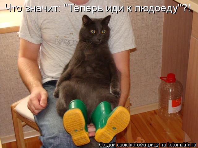 """Котоматрица: Что значит: """"Теперь иди к людоеду""""?!"""