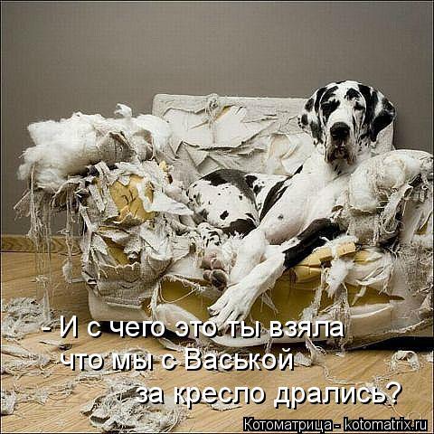 http://kotomatrix.ru/images/lolz/2015/11/23/6c.jpg