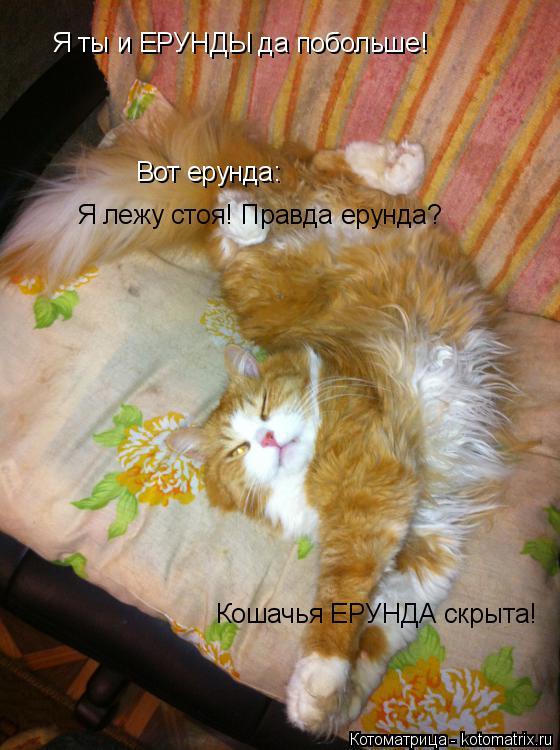 Котоматрица: Я ты и ЕРУНДЫ да побольше! Вот ерунда: Я лежу стоя! Правда ерунда? Кошачья ЕРУНДА скрыта!