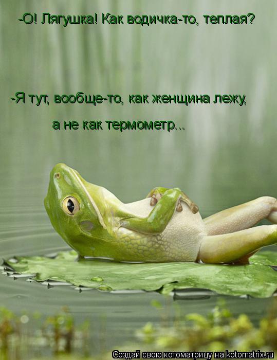 Котоматрица: -О! Лягушка! Как водичка-то, теплая? -Я тут, вообще-то, как женщина лежу, а не как термометр...