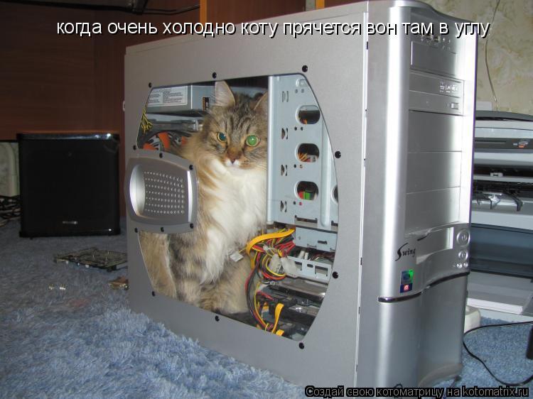 Котоматрица: когда очень холодно коту прячется вон там в углу