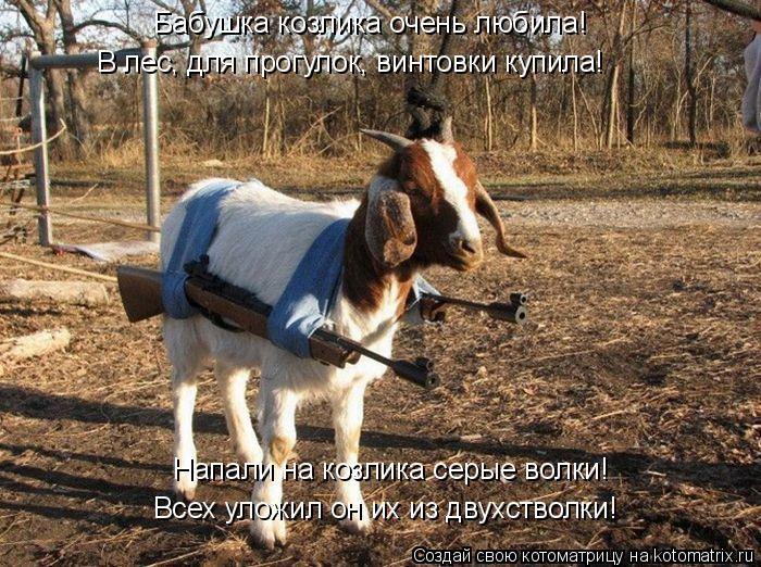 Котоматрица: Бабушка козлика очень любила! Напали на козлика серые волки! Всех уложил он их из двухстволки! В лес, для прогулок, винтовки купила!