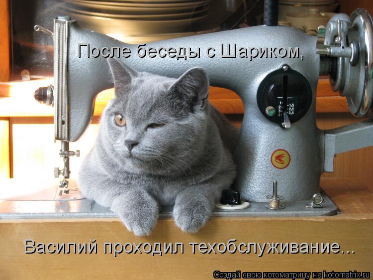 Котоматрица: После беседы с Шариком,  Василий проходил техобслуживание...