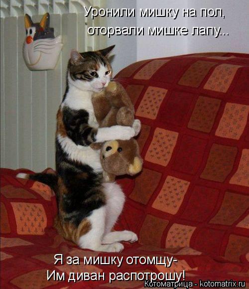 Котоматрица: Уронили мишку на пол, оторвали мишке лапу... Я за мишку отомщу- Им диван распотрошу!