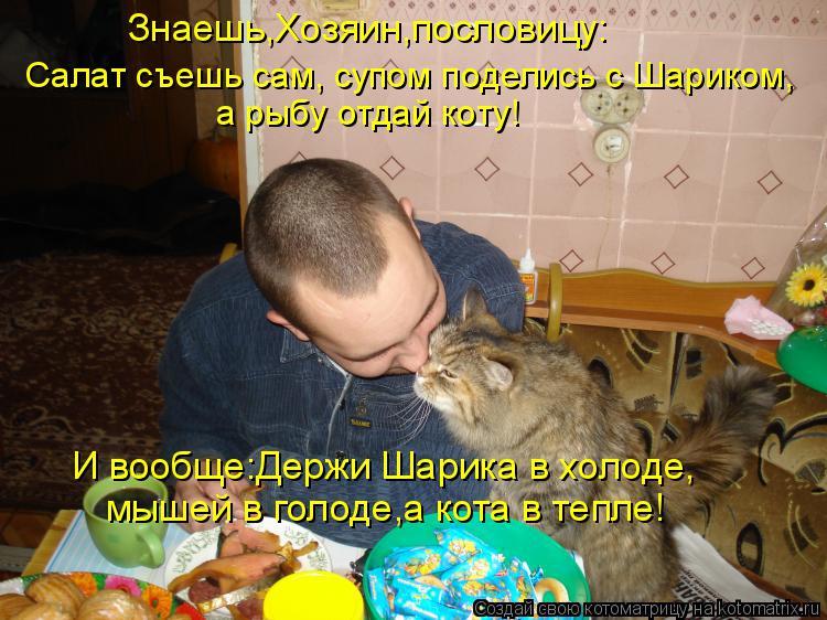 Котоматрица: Знаешь,Хозяин,пословицу: Салат съешь сам, супом поделись с Шариком, а рыбу отдай коту! И вообще:Держи Шарика в холоде, мышей в голоде,а кота в
