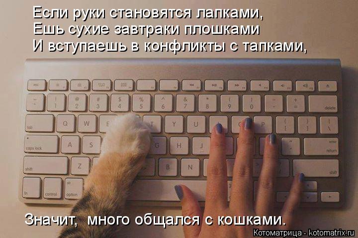 Котоматрица: Если руки становятся лапками, Ешь сухие завтраки плошками И вступаешь в конфликты с тапками, Значит,  много общался с кошками.