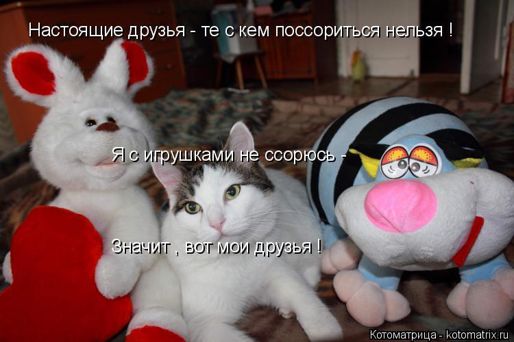 Котоматрица: Настоящие друзья - те с кем поссориться нельзя ! Я с игрушками не ссорюсь - Значит , вот мои друзья !